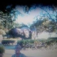 Lisa Palazzola's profile photo