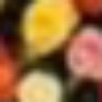 Mala  Bhatnagar's profile photo
